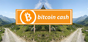 Bitcoin Cash collapses due to the Fork